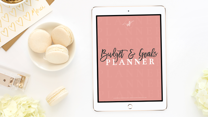 Budget & Goals Planner Colorful Disaster